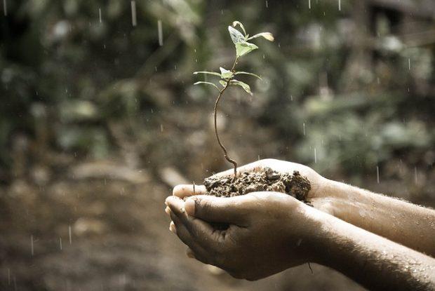 ナスカの地上絵で雨乞いする人